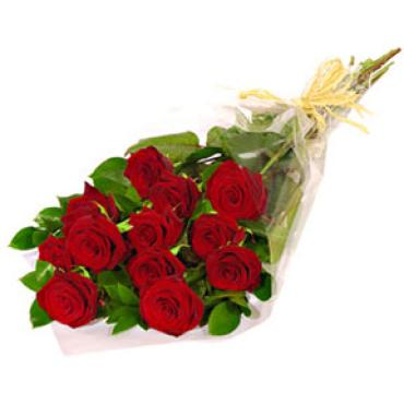 1 Dozen Long Stem Red Roses - Wrapped